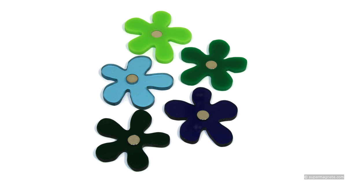 Flower Magnets Deco Magnets Acrylic Winter Colours
