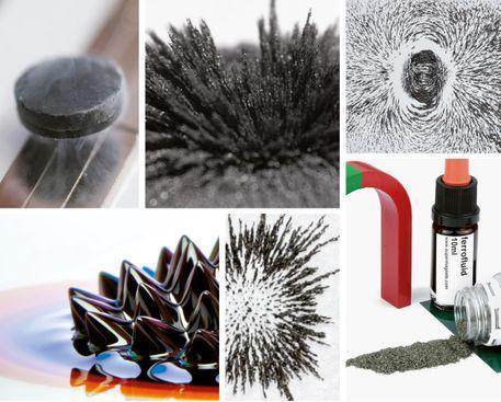 Magnetismus Glossar Online oder zum Download
