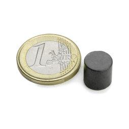 FE-S-10-10, Disco magnetico Ø 10 mm, altezza 10 mm, ferrite, Y35, senza rivestimento