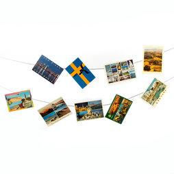 FL-06, Cuerda para fotos 3 m, con 2 lazos, incl. 30 imanes